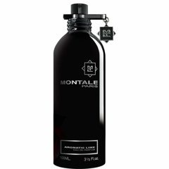 Montale Aromatic Lime Eau de Parfum 100 ml
